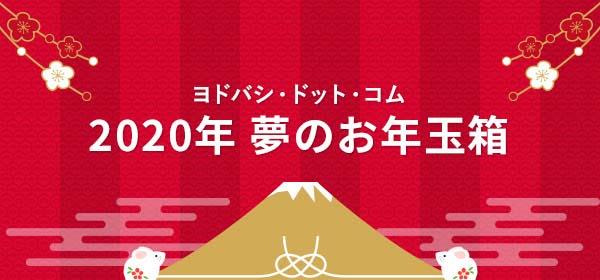 ヨドバシ・ドット・コム 2020年夢のお年玉箱
