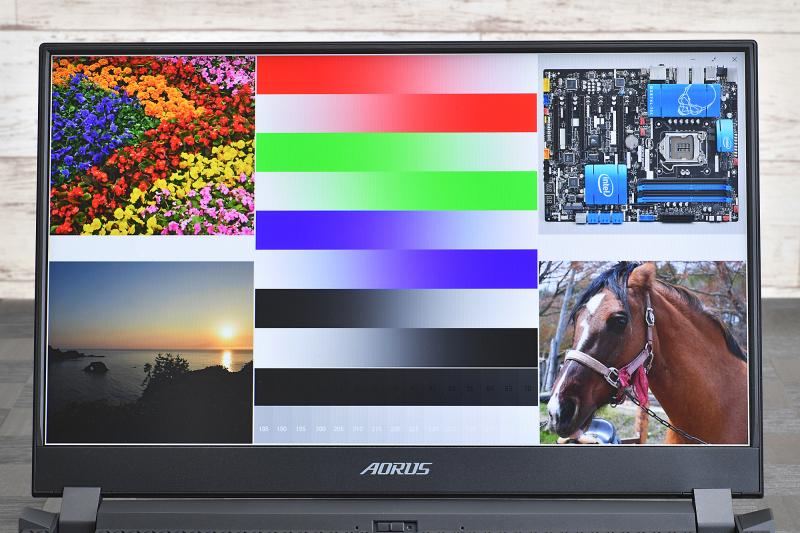 X-rite Pantone色校正認証を取得したIPSパネルの発色。NTSC比72%、SRGB 100%なので特別色が鮮やかというわけではないが、ゲームはもちろん動画や写真の鑑賞にも耐えられる出来だ