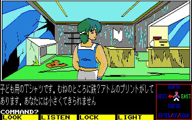 画面右下には、主人公が向いている方向が矢印で示されるほか、移動可能な方向は緑で表示されます。写真右の場面なら、表示されている画面は前方が西で、移動できるのは東のみ、となります。ここでテンキーの6を押すと、東へ進みます。