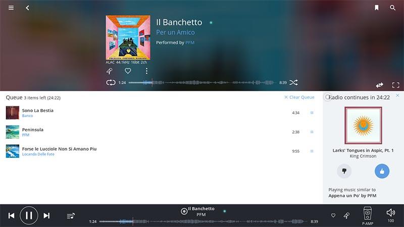 「Radio」ではアルバムのタグやメタデータを解析、次の曲を選ぶときの参考にされる