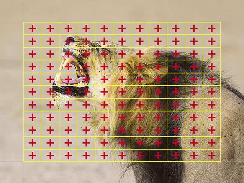 像面位相差AFは121点のクロスタイプ測距点で動体捕捉性能を向上