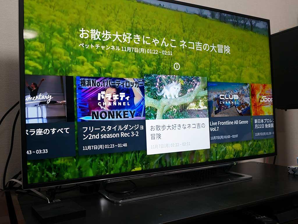 Fire TVを使って50型テレビでAbemaTV