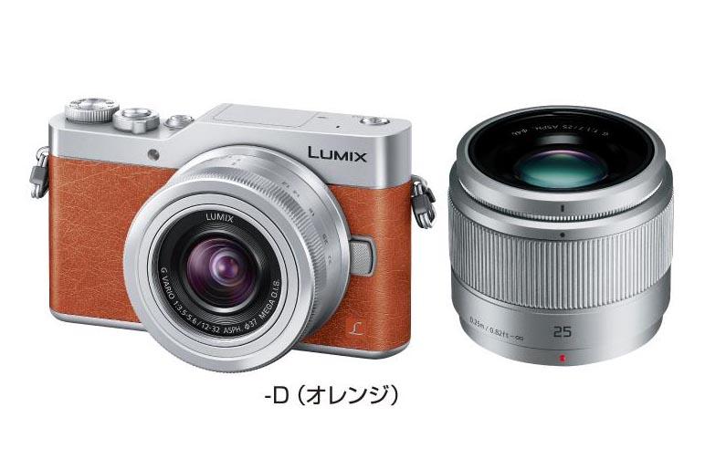 LUMIX DC-GF9W-D