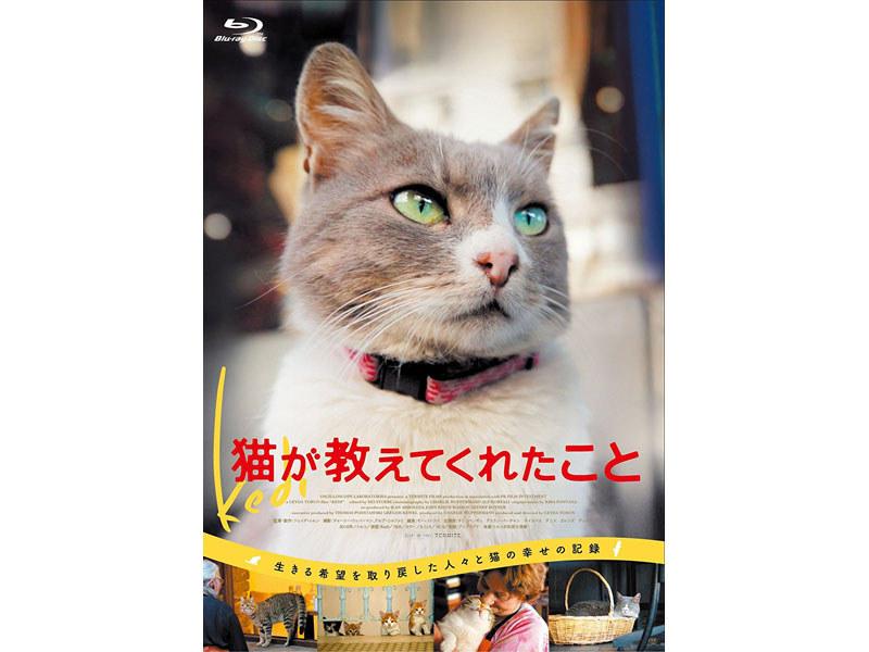 猫が教えてくれたこと<br>(C)2016 Nine Cats LLC