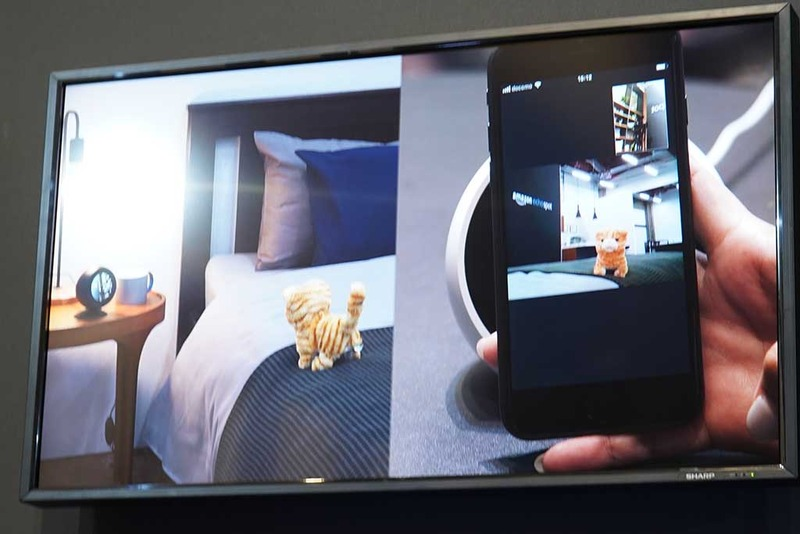 家のEcho Spotのカメラでペットの様子を確認