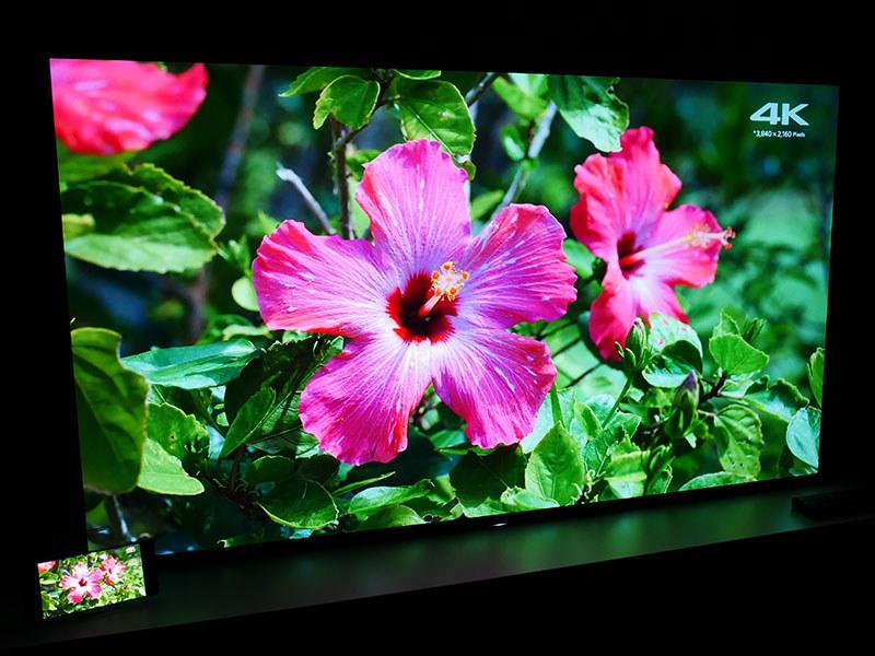 有機ELテレビ「BRAVIA」をリファレンスとして画質チューニング