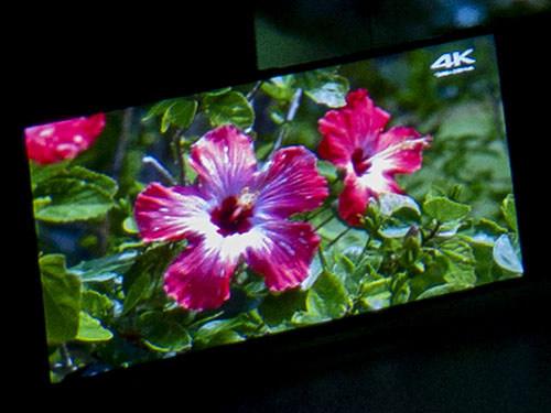 XZ3の画面。写真映りの関係で色味などは変わっているが、実機ではBRAVIAとほぼ変わらない綺麗な映像が観られた