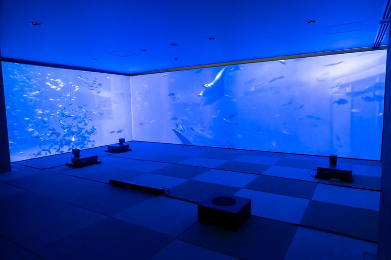 床にZ5000を3台設置して、横3面に水族館の映像を投射した例