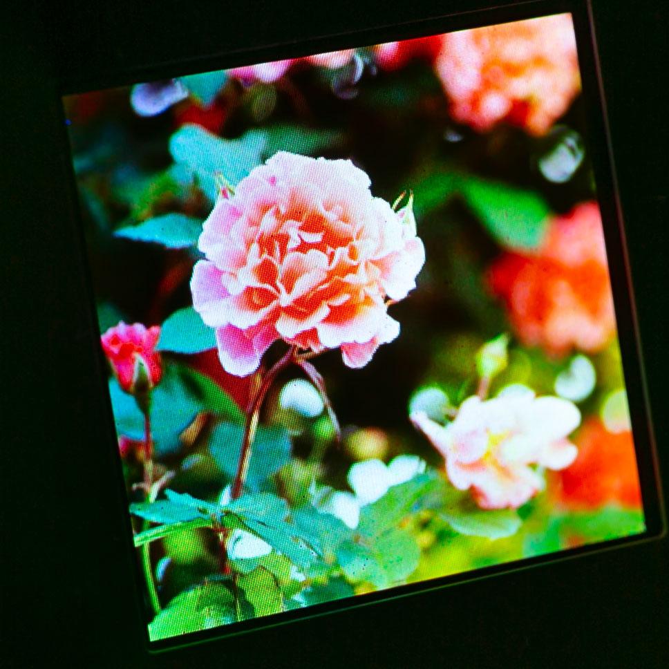 ディスプレイの拡大写真。数十ミクロンサイズのRGB LEDを27万個実装。「どのようにチップを配置しているかは明かせない」という
