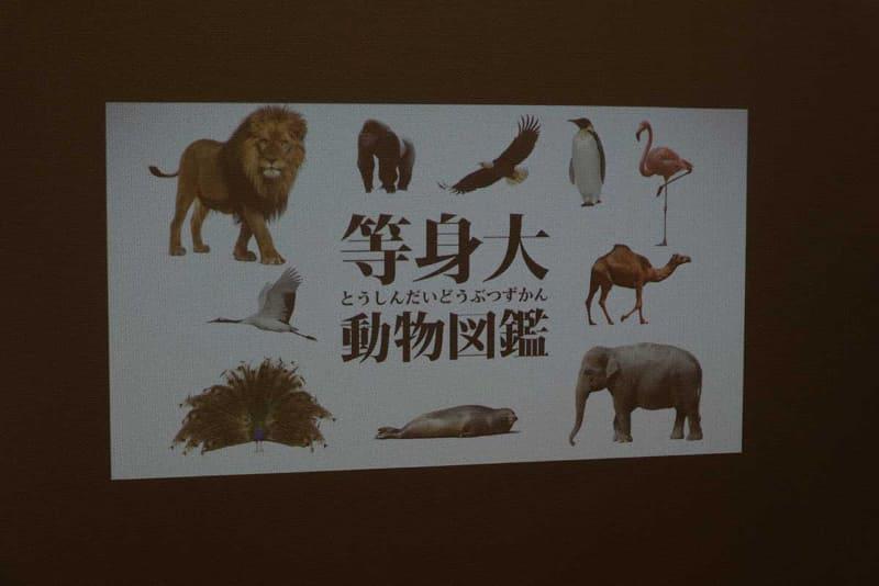 画面サイズを設定することで動物の大きさがわかる「等身大動物図鑑」