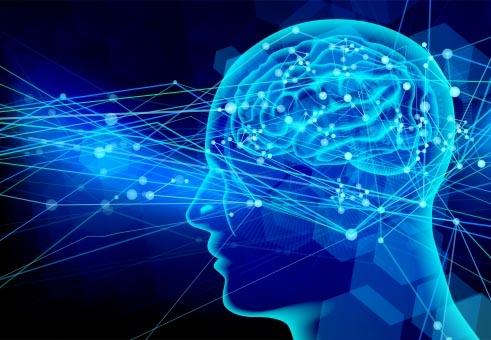 人間の聴覚の仕組みを再現するという「聴覚AIシステム」を採用