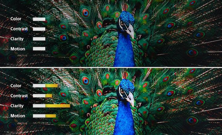 XRプロセッサによる調和の取れた最適処理が、自然で現実世界のような映像を生むという
