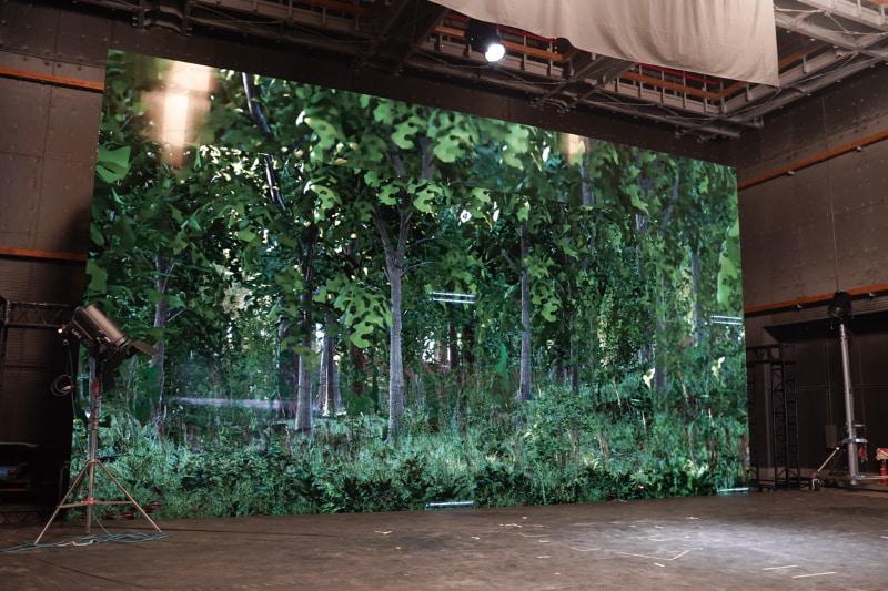 Crystal LEDに森のCG映像を表示