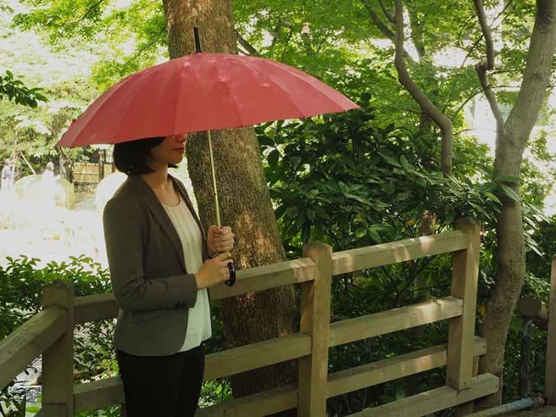 「傘」を持って日本庭園を散策できる