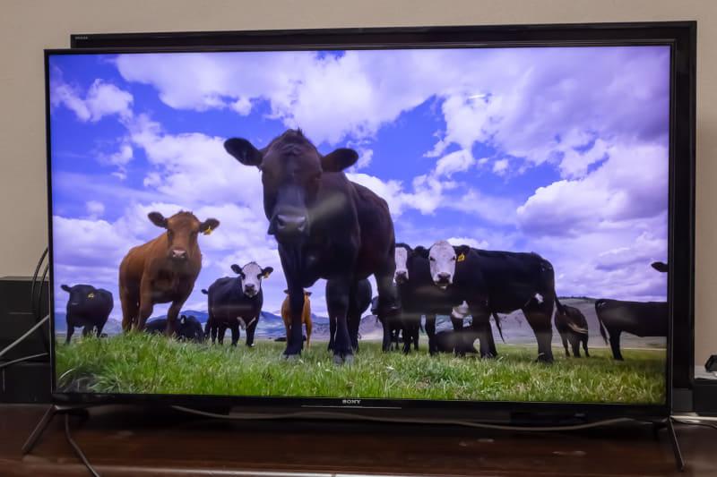 """狭額縁なデザインで、映像はまるで中空に浮いているように見える<br><span class=""""fnt-70"""">※背後に見切れているのは筆者宅の私物のテレビ</span>"""