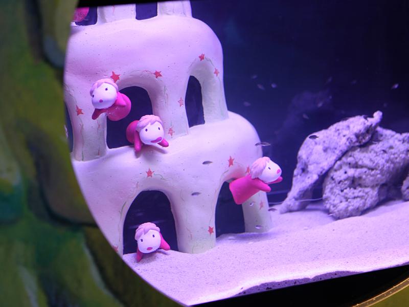 ポニョは、「サンゴ礁の魚たち」水槽以外にも、様々な場所に