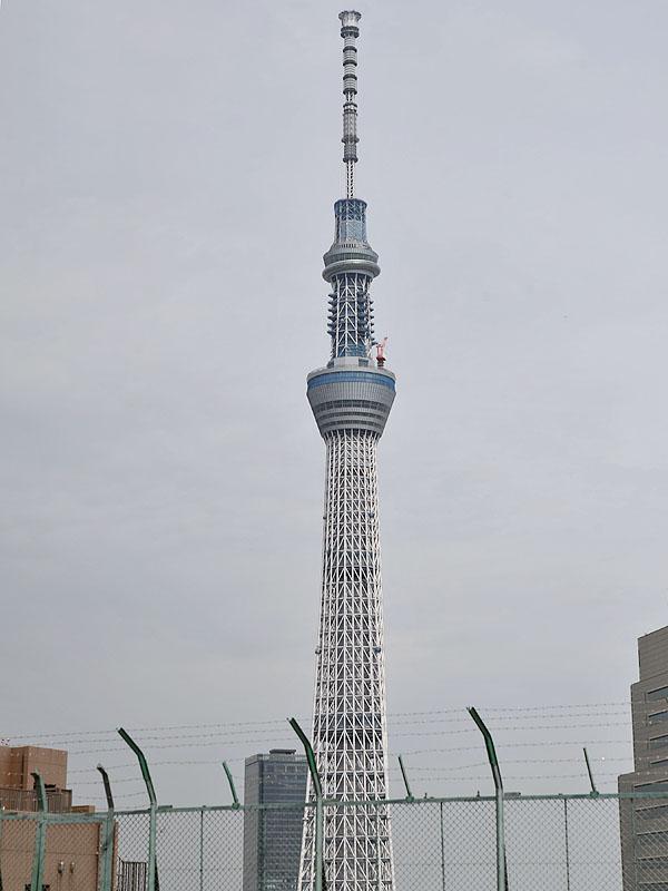 会場となった浅草駅ビル屋上からは、東京スカイツリーが良く見える