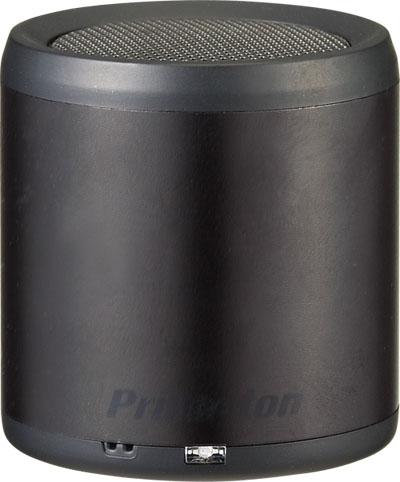PSP-BTS1B