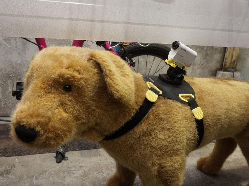 犬の背中にアクションカムを取り付けられる「ドッグハーネス」