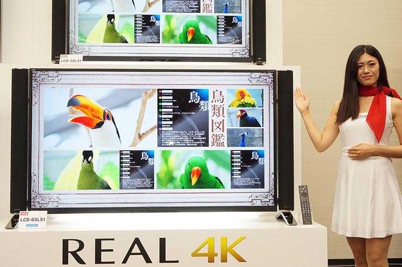 REAL LS1シリーズ「LCD-65LS1」