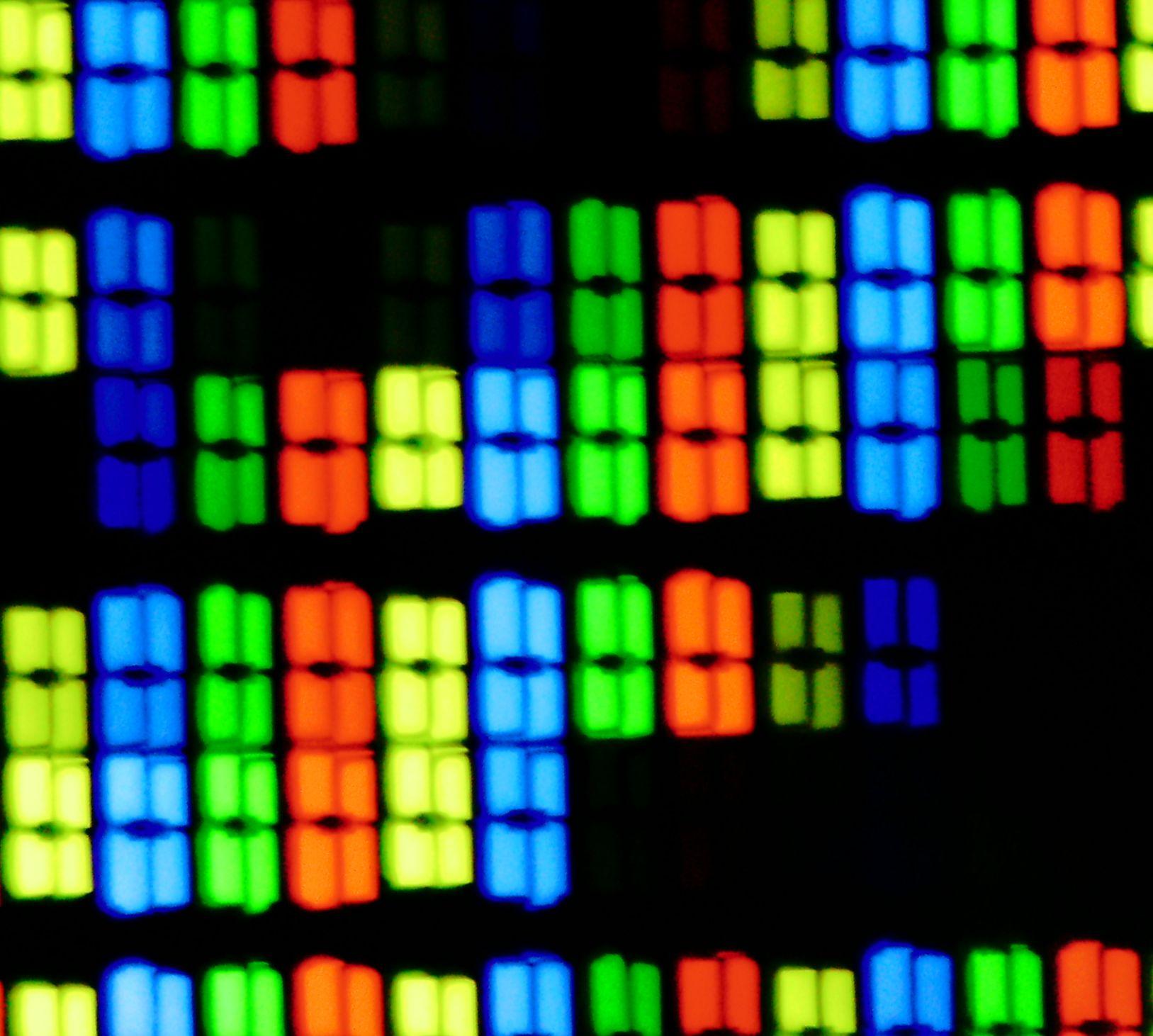 80型「Beyond 4K」表示対応の画素写真。黄サブピクセルがあることから分かるようにクアトロンパネルであることが分かる