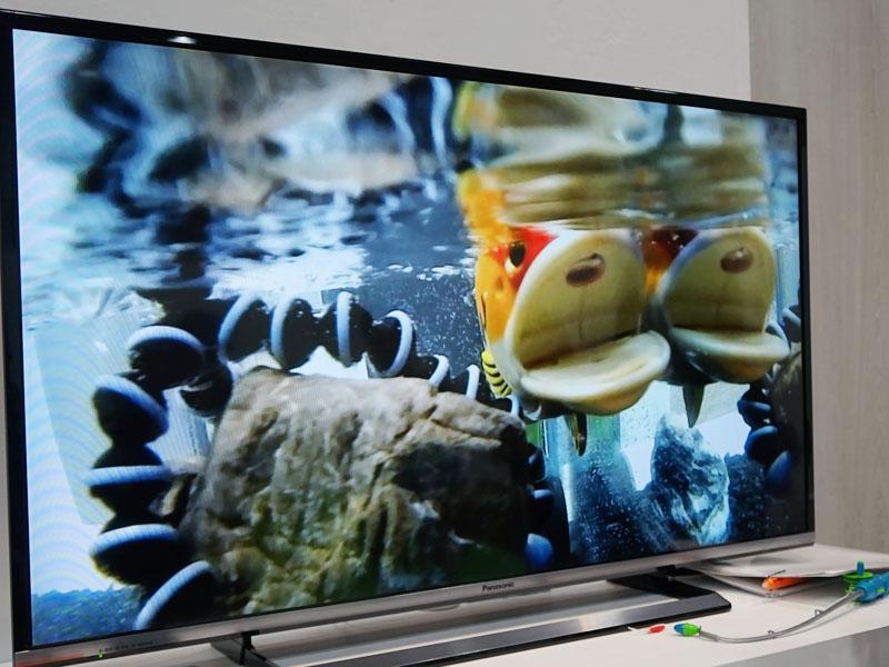 魚釣りで利用したイメージ。水面にA1Hを浸け、魚の目線で撮影