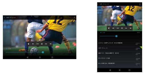 「SeeQVaultプレーヤー」の画面イメージ