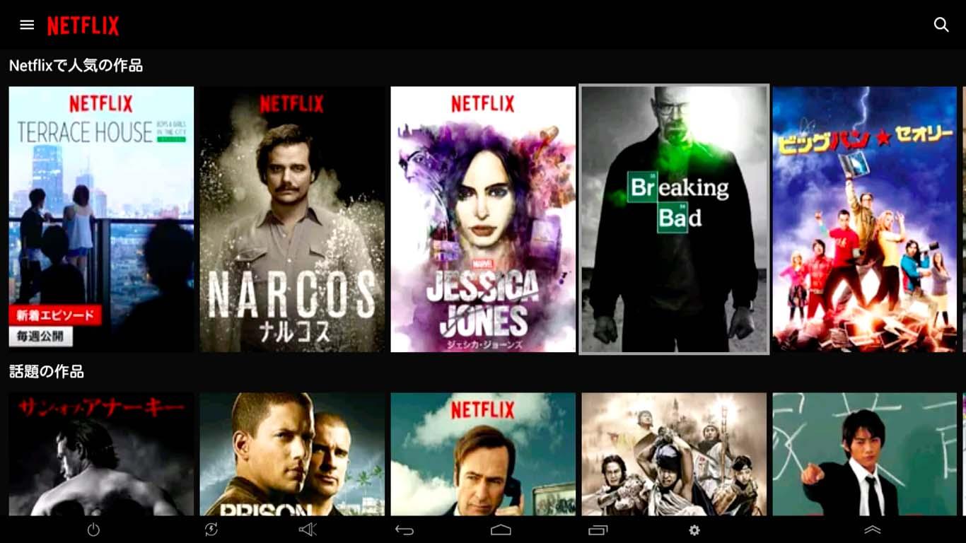Netflixも問題なく起動できた