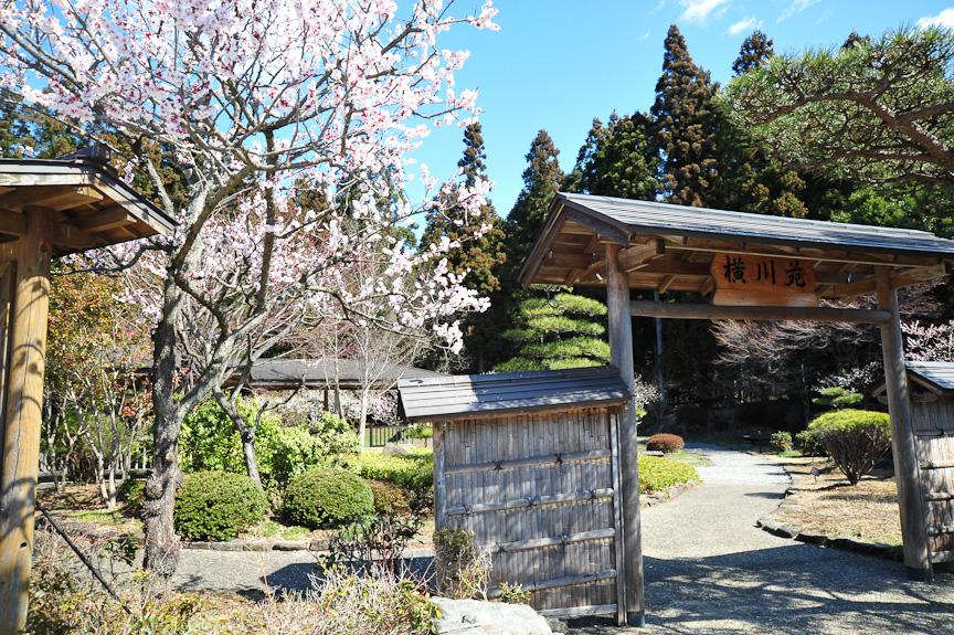 敷地内には2つの日本庭園がある