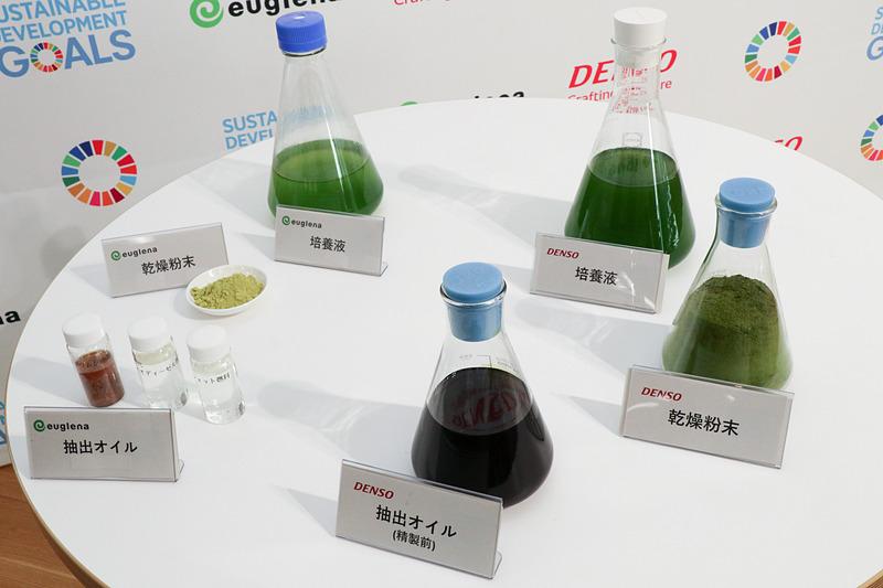 ユーグレナとデンソーで扱っている微細藻類の展示品。左側がユーグレナの微細藻類「ユーグレナ(和名:ミドリムシ)」で、右側がデンソーの微細藻類「コッコミクサ KJ(旧名:シュードコリシスチス)」