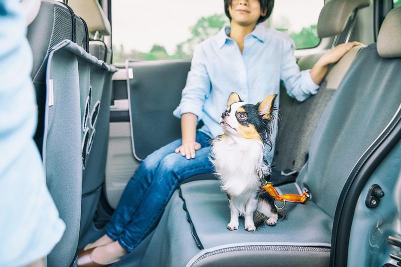 ホンダ純正愛犬用アクセサリー「Honda Dog」シリーズは、2019年1月に追加発売された新色のグレーのアイテムを中心に展示