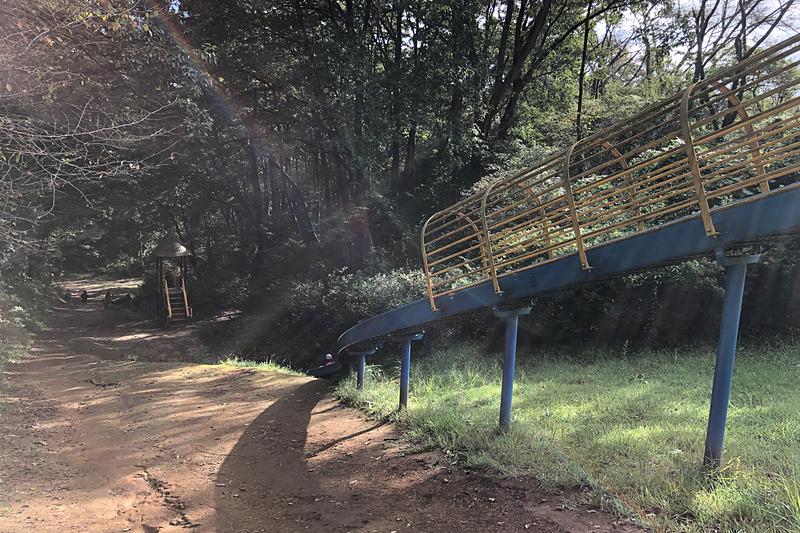水戸市森林公園に4か所ある駐車場のうち、「森のシェーブル館」駐車場に停めて恐竜広場方面へ歩いていくと、左手に見えてくるのがこの「ジャンボすべり台」。里山の急斜面を利用して作られているので、まぁスリル満点です。いちばん下まですべり降りると、プラテオサウルスがでーんと出迎えてくれますよ~