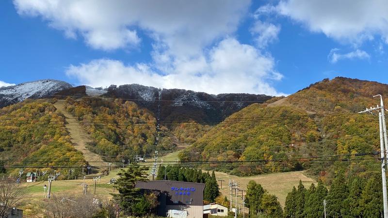 いちばん上が雪の白、真ん中が赤や黄色の紅葉、いちばん下は鮮やかな緑。これが、白馬名物の「三段紅葉」なのだと白馬村観光局の方が教えてくれました。雪景色が有名な白馬ですが、秋も素晴らしいですね。この後、蓼科方面を回って帰ったのですが、今年はどこも紅葉がすっごく綺麗です!