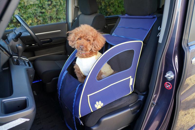 小型犬用の「ペットシートプラスわん」使用イメージ