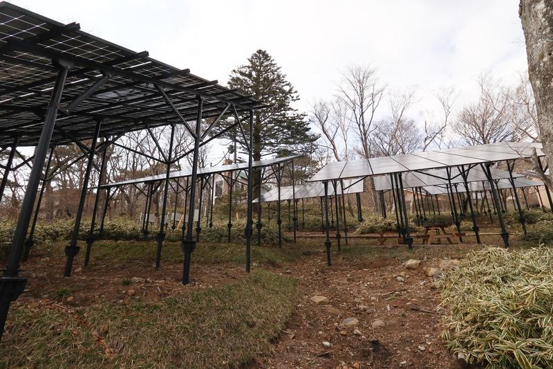 Looop Resort NASUは太陽光発電所でもあり、発電出力は203.84kW