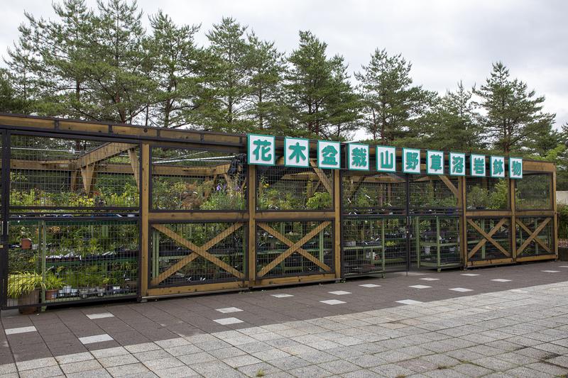 わき水エリアの後ろにある花木盆栽山野草溶岩鉢植物の販売所。以前、コケの盆栽が欲しかったこともあって見せてもらったことがある。売り場の人にいろいろ教えてもらったが、東京の気温では育てることが難しいとのことだったので断念した