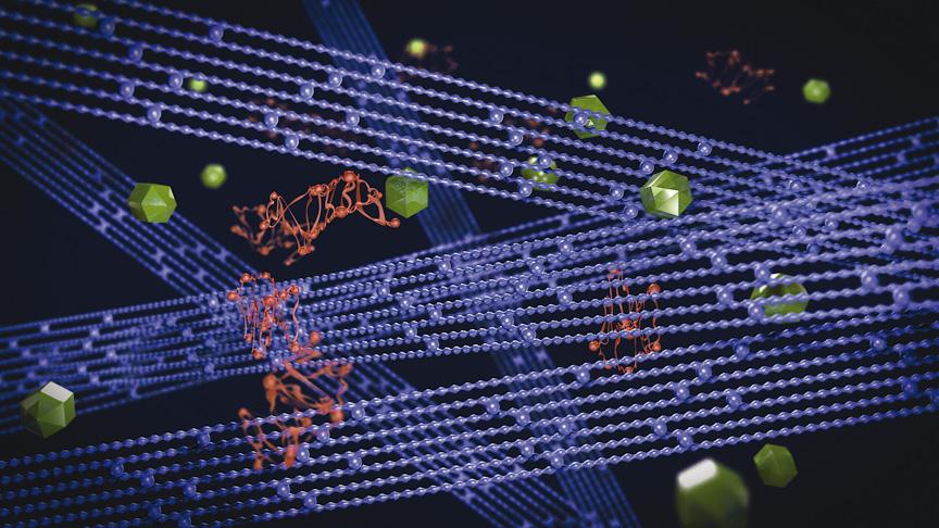 コンパウンドの拡大イメージ。赤い分子鎖が「ウェット・グリップ・エラストマー」、青い長い鎖が「ロング・ラスティング・エラストマー」、緑色が「シリカ」