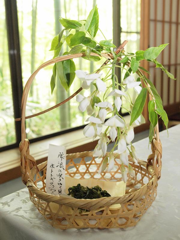 白い藤の花の甘い香りが部屋中に!添えられた万葉の歌は『藤波の 咲き行く見れば ほととぎす 鳴くべき時に 近づきにけり』