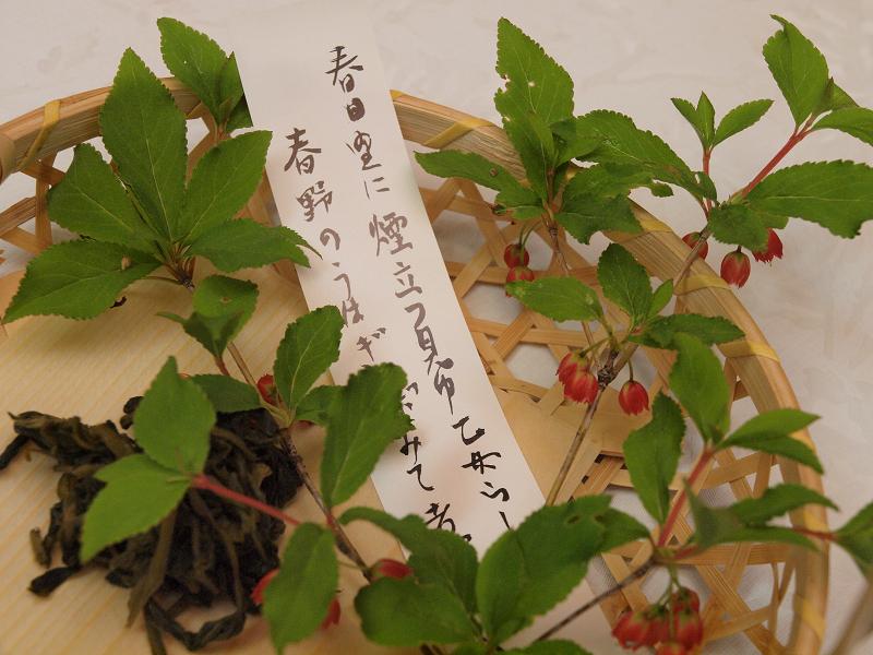 こちらのアクセサリーはベニドウダン。淡紅色の花が目を引きます