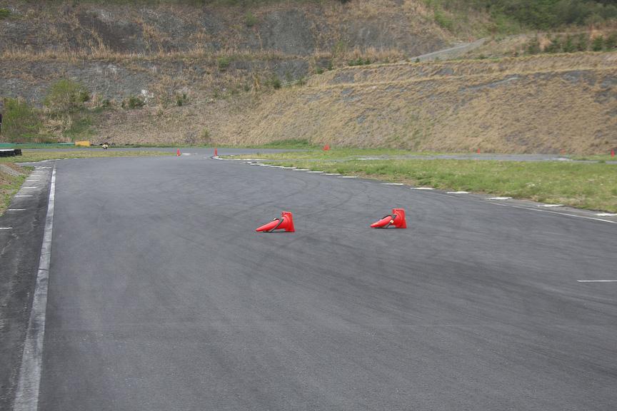 バックストレートにはライン取りを分かりやすくするためにパイロンが立てられる