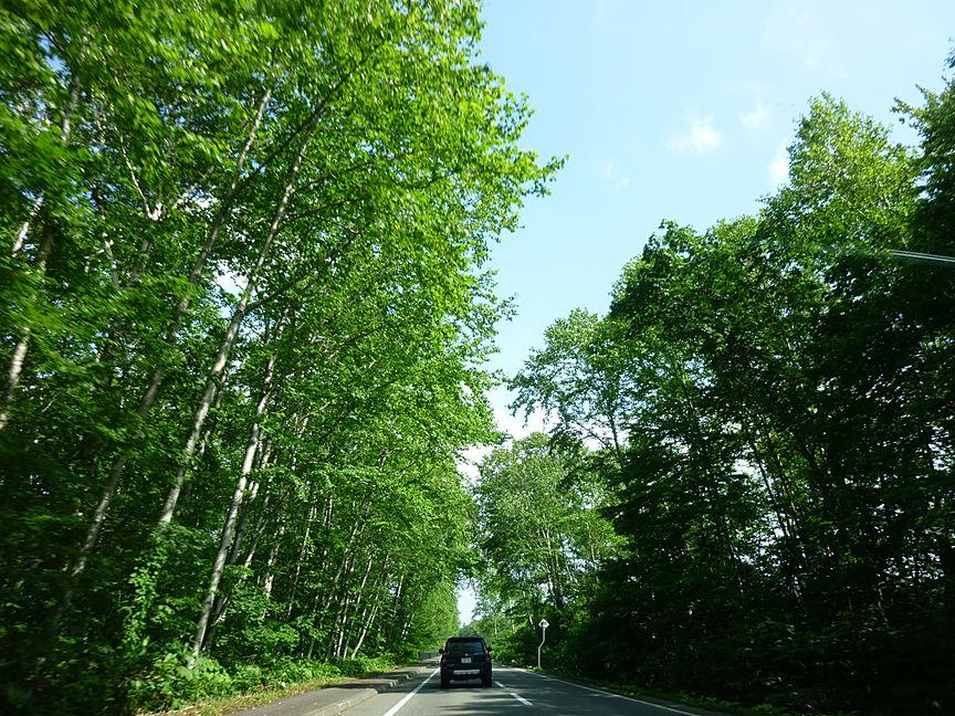 お天気が変わると風景もこんなに変わるんです。美味しい物を食べたり、雄大な景色を眺めたり、気持ちよいドライブ旅行を楽しむために、くれぐれも安全運転を心がけたいもの