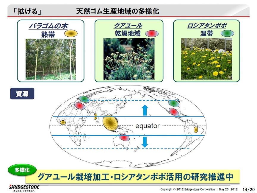 天然ゴム資源を拡大