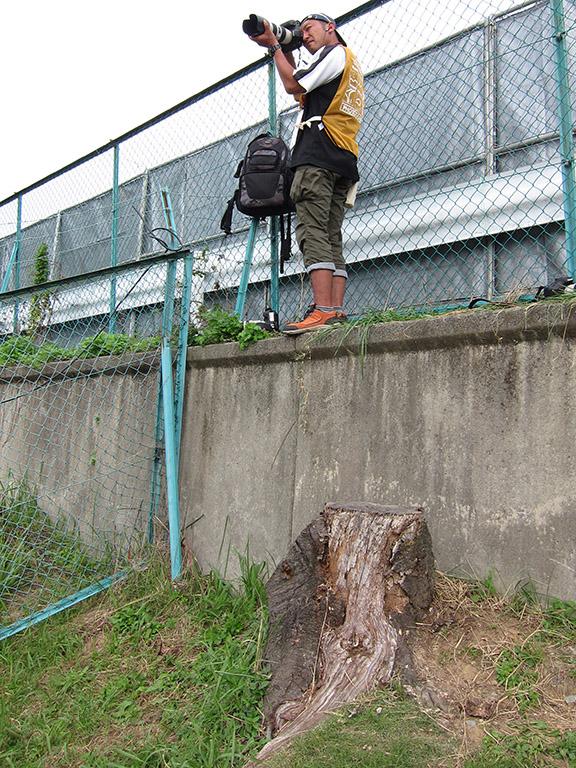 微妙に高い壁。歳をとると高いところは避けたかったが……