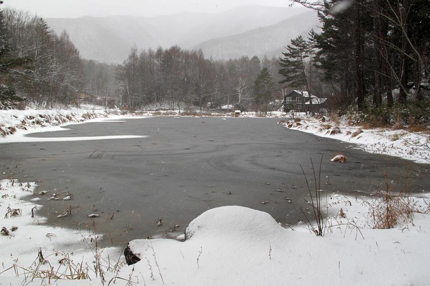 これからどんどん凍っていくであろう大きな池。あと1カ月もすればスケートリンクになっているかも
