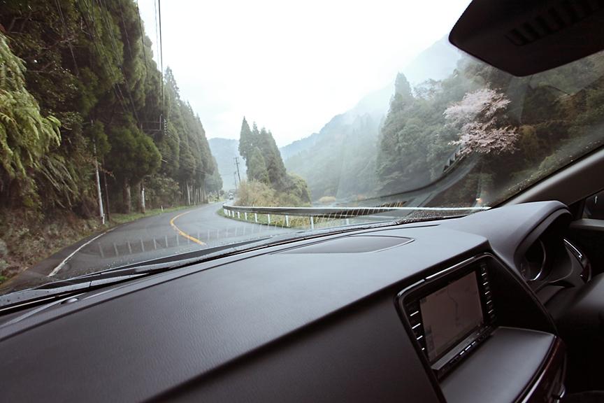 雨の国道223号。雨の中の運転は緊張するものだが、高いスタビリティを持つアテンザなら、より余裕をもって走ることができる。沿道には桜が咲いている個所もあった