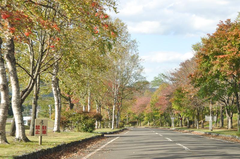 秋の北海道のドライ路面を走行した