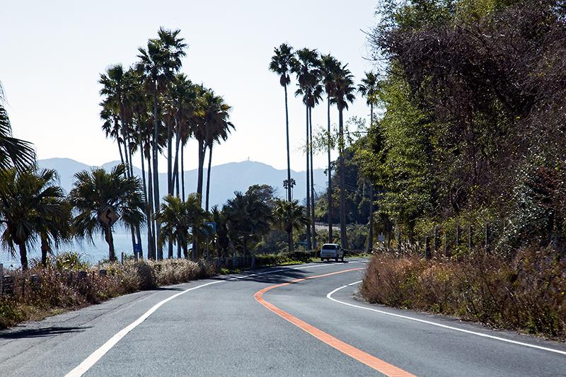 一般道、高速道路と走ってみたが、2.0リッターガソリンモデルの走りはしなやかだった