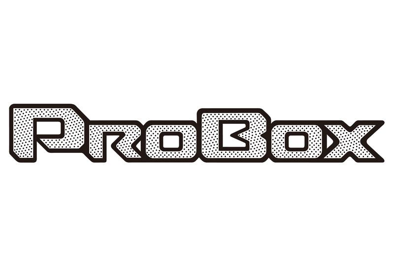 プロボックスの車名ロゴ