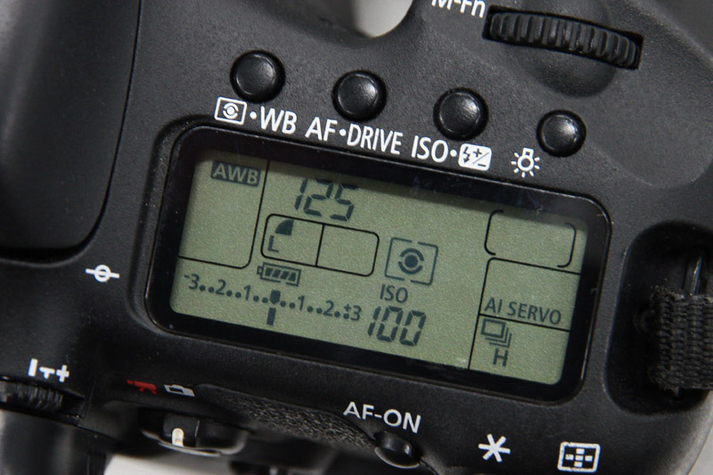 シャッター速度1/125秒にセット。オートフォーカスは「AI SERVO」にして撮影