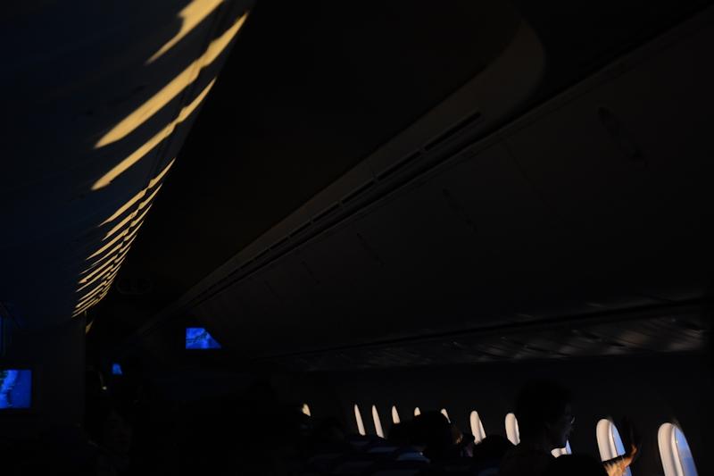 機内照明が落とされているので、窓の形となってオーバーヘッドコンパートメントにも映し出される